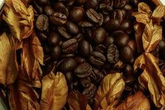与干燥花的咖啡豆 免版税库存照片