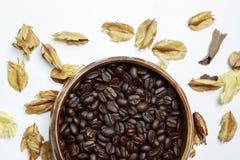 与干燥花的咖啡豆 图库摄影