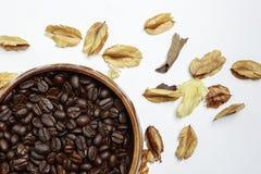 与干燥花的咖啡豆 库存图片