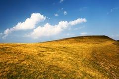 与干燥黄色草和蓝天的小山 免版税图库摄影