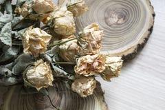 与干玫瑰的裁减木头;在裁减树的干燥玫瑰 免版税库存图片