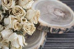 与干玫瑰的裁减木头;在裁减树的干燥玫瑰 免版税图库摄影