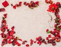 与干红色花和草本的亚麻制桌布 背景细部图花卉向量 免版税库存图片