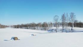 与干草卷的冬天风景在领域的 免版税库存照片