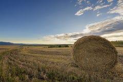 与干草卷的秋天风景 免版税库存图片