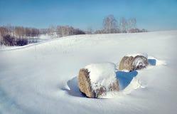 与干草卷的美好的冬天风景  库存图片
