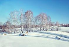与干草卷的美好的晴朗的冬天风景  免版税库存照片