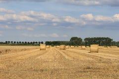 与干草和秸杆大包的一个领域 库存照片