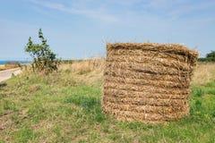与干草堆的农村风景在Normandie附近,法国海岸  库存照片