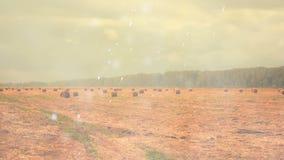 与干草堆的农田在雨下 股票录像