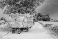 与干草无盖货车的风景 库存照片