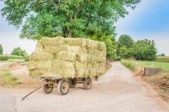 与干草无盖货车的风景 免版税图库摄影