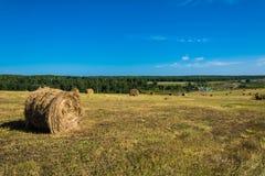 与干草的领域在村庄附近滚动 库存图片