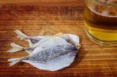 与干鱼的啤酒 免版税库存照片