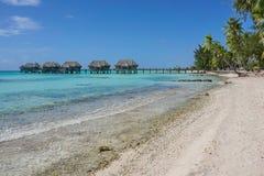 与平房的热带海岸在盐水湖 免版税库存照片