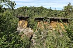 与平的盒盖的Poklicky岩石在森林 库存照片