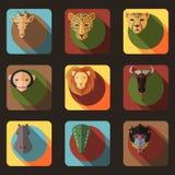 与平的设计的动物画象集合 免版税库存照片