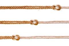 与平结集合的三条绳索 免版税图库摄影
