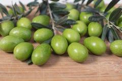与年轻橄榄色的枝杈的被收获的新鲜的橄榄在木backgrou 免版税库存照片