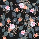 与庭院小花束的无缝的ditsy典雅的样式上升了花和巨大的叶子在黑背景 E 皇族释放例证