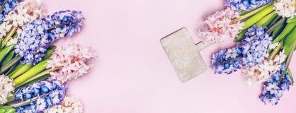 与庭院标志的五颜六色的风信花束在粉红彩笔背景,顶视图,文本的,横幅地方 图库摄影