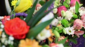 与康乃馨的欢乐花玫瑰 影视素材