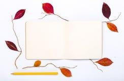 与开放笔记本和铅笔的五颜六色的秋叶 免版税库存图片