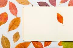与开放笔记本的五颜六色的秋叶在白色背景 库存图片
