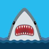 与开放嘴和锋利的牙齿的鲨鱼 免版税库存图片