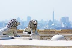 与开罗塔的狮子雕象 库存照片