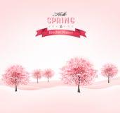 与开花的佐仓树的春天背景。 向量例证