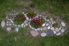 与开花的庭院花的花床 库存照片