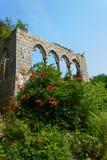 与开花的灌木的古老archs 库存图片