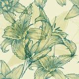 与开花的百合的无缝的花卉背景, h 向量例证