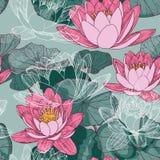 与开花的荷花的无缝的花卉背景 免版税库存照片