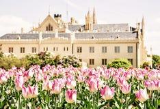 与开花的郁金香的庄严Lednice城堡,黄色过滤器 图库摄影
