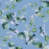 与开花的雪果枝杈的花卉无缝的水彩样式在淡色蓝色背景 向量例证