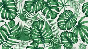 与异乎寻常的叶子和植物密林的时髦无缝的热带样式 向量例证