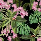 与异乎寻常的桃红色兰花花,棕榈monstera叶子,密林叶子的热带无缝的样式背景