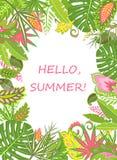 与异乎寻常的叶子的夏天热带海报 库存照片
