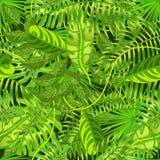 与异乎寻常的热带叶子的无缝的样式导航例证 库存图片