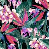 与异乎寻常的花的热带无缝的样式 免版税库存照片