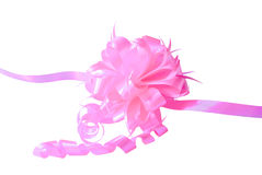 与弓的一条桃红色丝带 免版税图库摄影
