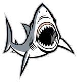 与张的嘴的鲨鱼 库存图片
