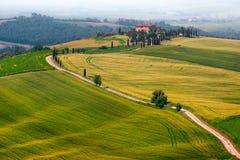 与弯曲的路和柏,意大利的美妙的有薄雾的托斯卡纳风景 免版税图库摄影