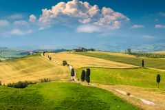 与弯曲的路和柏,意大利,欧洲的美好的托斯卡纳风景 免版税库存照片