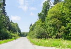 与弯曲道路和森林的夏天风景由天空蔚蓝 免版税库存照片