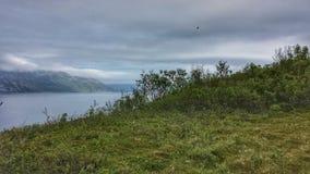 与强大山和蓝色海湾的美好的夏天风景 免版税图库摄影