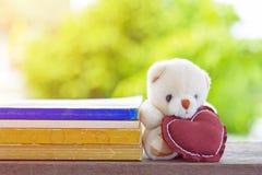与形状心脏枕头的可爱的玩具熊学会书与的 免版税库存照片