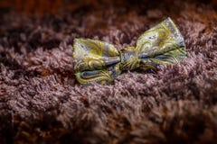 与形状的蝶形领结 免版税库存图片